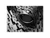 Noir et Blanc 3 - L_oeil des Kelpies - Ecosse r