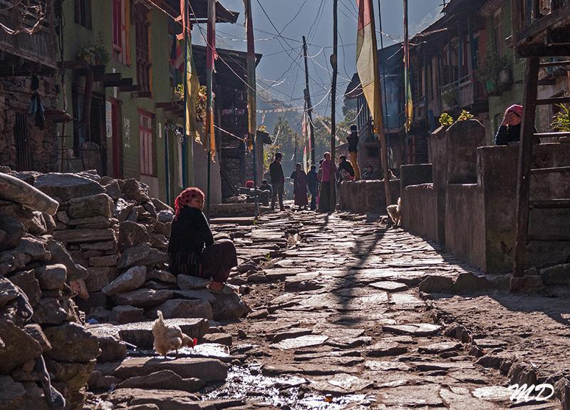md-nepal