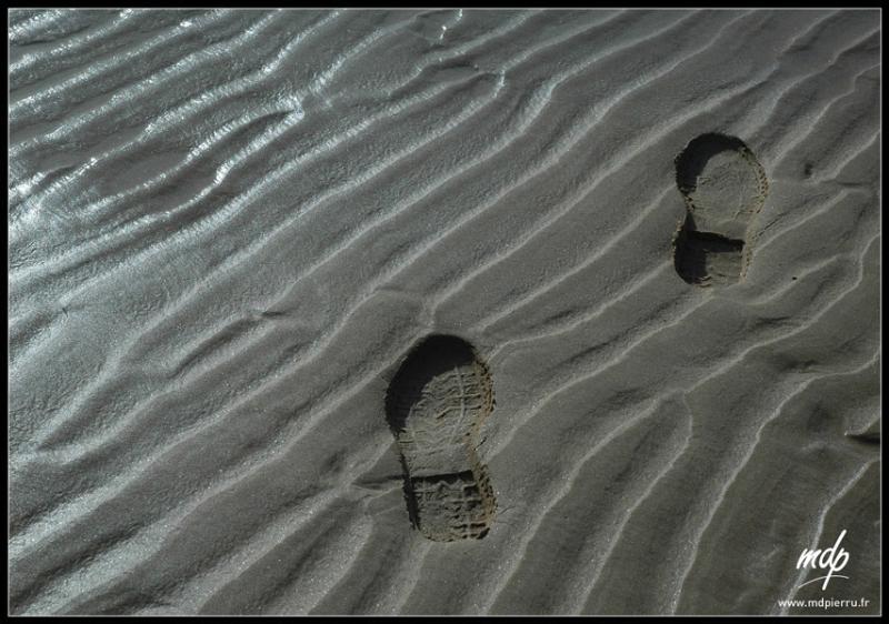 Mes pas dans le sable
